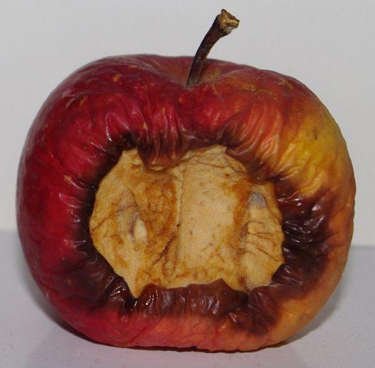 rotten-apple 1