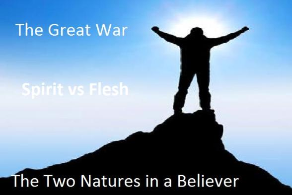 Image result for two natures, sinner/saint
